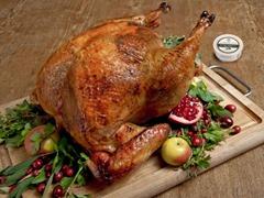 turkey revolution, because of Mom